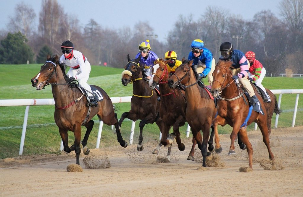 Practical tips for winning at horse races