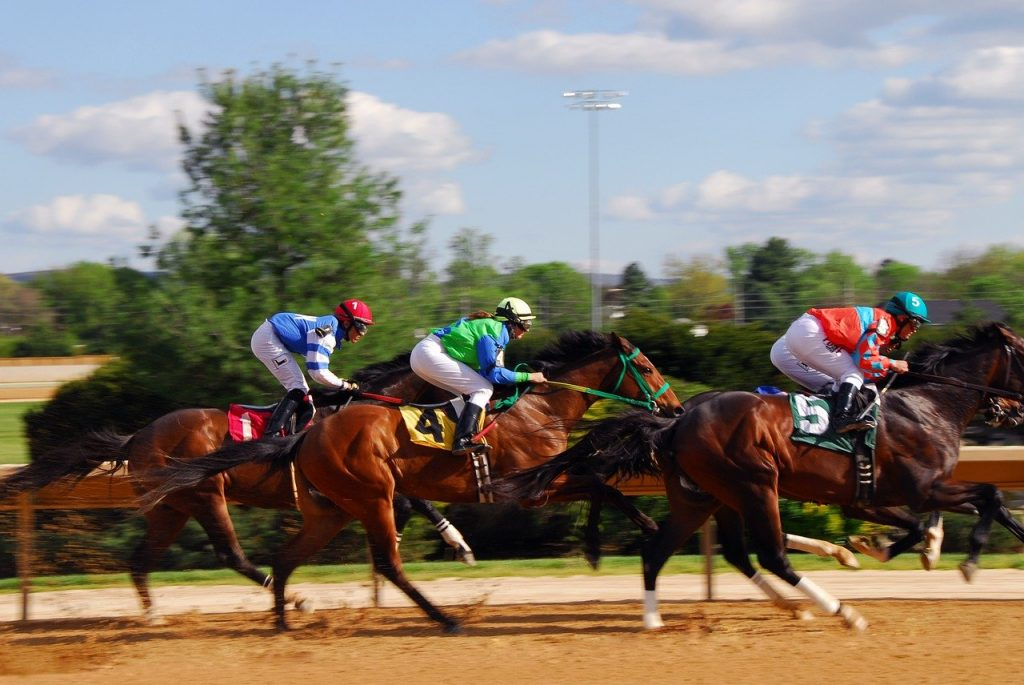 What are the different types of races for sports betting ?