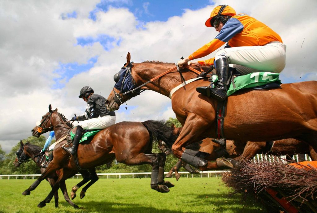 All you need to know about the online horse betting odds system