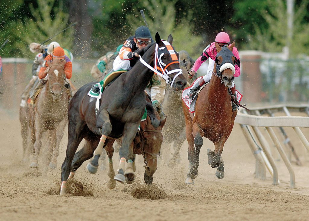 The best strategies to win a bet at horse races