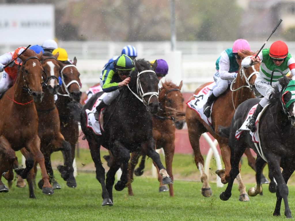 The right techniques to win at horse racing